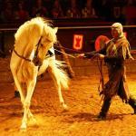 diana_travel_ugin_ritzarskii_turnir_zamok_1.jpg